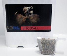 visceral-pail-1