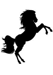 Rearing Horse.jpg