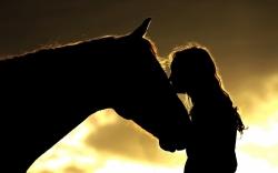 horsehumanconnection_d4476a39.jpg