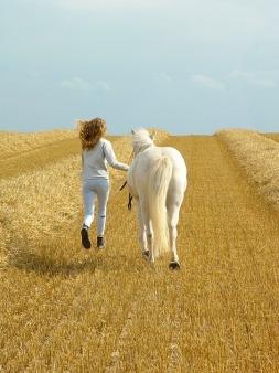 horse-4950544_960_720